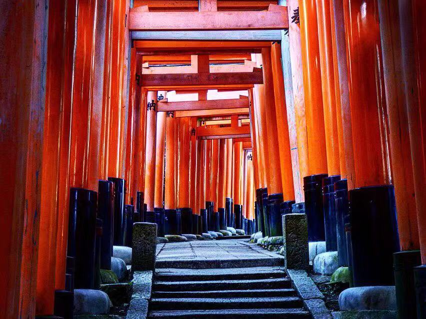 fushimi inari kyoto highlight