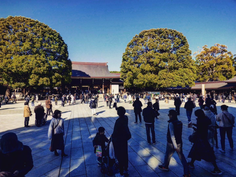 Meiji Jingu tokyo highlights