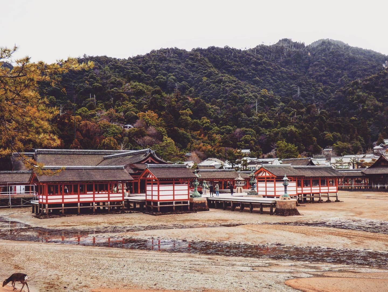 Itsukushima Shrine hiroshima